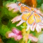 """Monarch Butterfly on Coneflower - Impasto"" by johncorney"