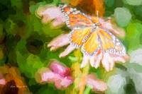 Monarch Butterfly on Coneflower - Impasto