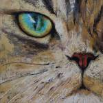 """""""Persian Cat"""" by creese"""