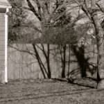 """stockade fence and trees photography painting"" by jnanian"
