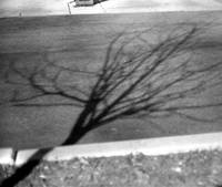 bent shadow and curb photographic painting