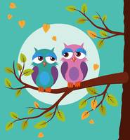Sleepy owls in love