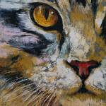 """""""Maine Coon"""" by creese"""
