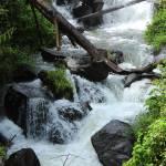"""Whitewater Rapids"" by rhamm"