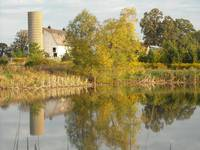 The Farm Reflection