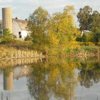 The Farm Reflection Art Prints & Posters by Roseann Riggi-Knudson