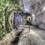 """A Garden in the Basement (Girona Cathedral, Catalo"" by mgarrido"