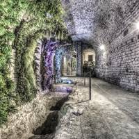 A Garden in the Basement (Girona Cathedral, Catalo Art Prints & Posters by Marc Garrido