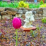 """KE Garden Study 1"" by robertmeyerslussier"
