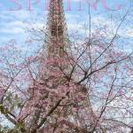 """Eiffel Tower in Spring"" by CoraNiele"