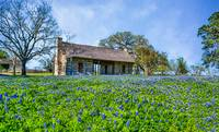 Logcabin and Bluebonnets