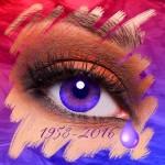 """""""Red Rage to Purple Tears"""" by DonThornton"""