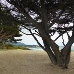 """Quiet Carmel Beach"" by GordonBeck"