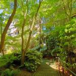 """""""Down to Home, Spring, Vancouver BC"""" by PriscillaTurner"""