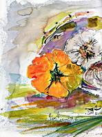 Yellow Tomatoes and Garlic Watercolor and Ink