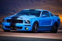 Mustang Muscle ' A Little Blue'