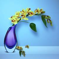 Beautiful Vase of Flowers-3 Art Prints & Posters by Nina Bradica