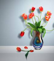 Beautiful Vase of Flowers-4