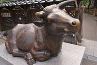 Holy Lucky Cow Bronze Statue at Japanese Shrine