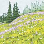 """""""Sun Peaks Meadow"""" by wolodko"""