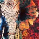 """""""Sketched Elephant"""" by ImageMonkey"""