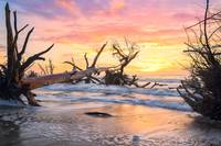 Charleston Sc Boneyard Beach At Sunrise South Caro