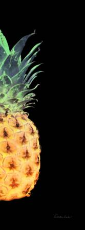 14RR Artistic Glowing Pineapple Digital Art