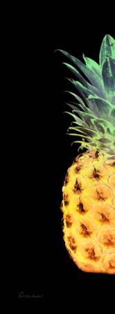 14RL Artistic Glowing Pineapple Digital Art