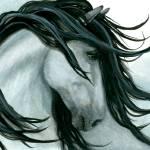 """Majestic Grey Buckskin Horse"" by AmyLynBihrle"