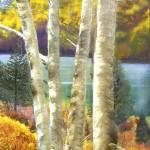 """Cave Run Lake , Kentucky"" by BrendaSalyersArt"