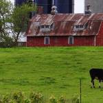 """""""Scene from rural Wisconsin"""" by Anewsgal"""