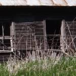 """Three empty windows"" by Anewsgal"