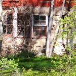 """Shadowed fieldstone and birch"" by Anewsgal"