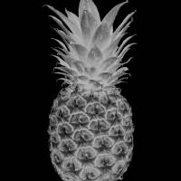 14b Abstract Expressive Pineapple Digital Art BW Art Prints & Posters by Ricardos Creations