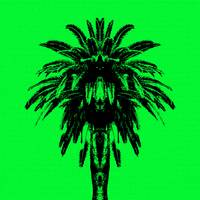 Palm Tree - Green Sky