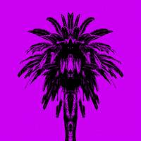 Palm Tree - Purple Sky