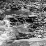 """Conklin Gully II in B&W"" by dbwalton"