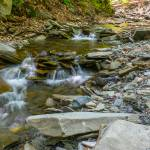 """Conklin Gully I"" by dbwalton"