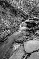 Conklin Gully Rushing Stream in B&W