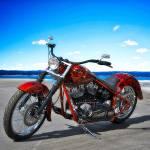 """""""Harley"""