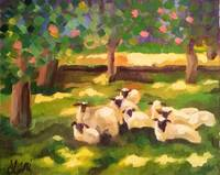 The Sheep_