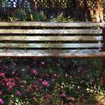 """Bench in Blossom"" by RCdeWinter"