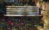 Bench in Blossom