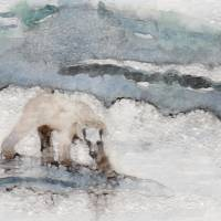 White Bear On Ice Art Prints & Posters by penny pausch