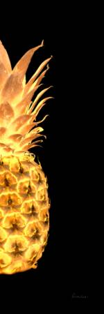 14gr Abstract Expressive Pineapple Digital Art