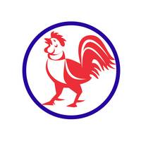 rooster-crowing-side-CIRCLE_5000