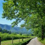 """Cades Cove Lane"" by KPphotography"
