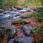 """smoky mountain creek"" by KPphotography"