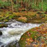 """autumn river"" by KPphotography"