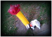 JHanlon_The_Yellow_Hydrant